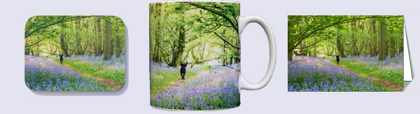 Matching mug, coaster, and card with bluebell woods photo